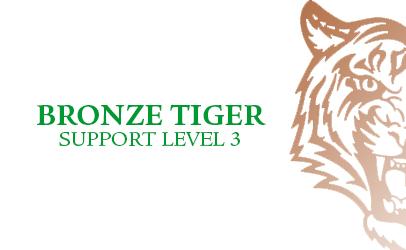 Bronze Tiger Level 3