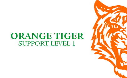 Orange Tiger Level 1